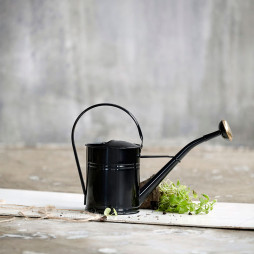 Watering Can Water