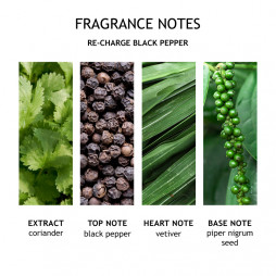 Bath & Shower Gel, Re-charge Black Pepper